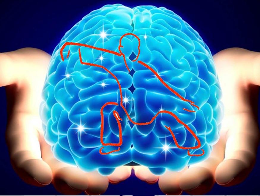 Tai Chi Neuro-Columna